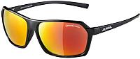 Очки солнцезащитные Alpina Sports Finety CMR / A86143-31 (черный) -