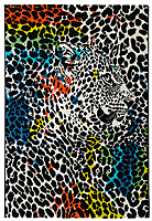 Ковер Devos Caby Maya 485 (120x170, лео) -