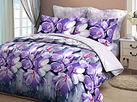 Комплект постельного белья VitTex 4321-151 -