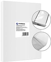 Пленка для ламинирования Гелеос LPA4-200 216x303 200мик -