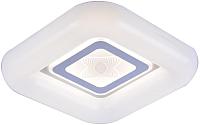 Потолочный светильник ESCADA 10204/SG LED (белый) -