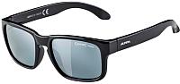 Очки солнцезащитные Alpina Sports Mitzo CM / A85723-31 (черный) -