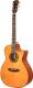 Акустическая гитара Dowina Rustica GAC -