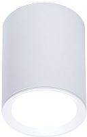 Точечный светильник Ambrella TN215 WH/S -