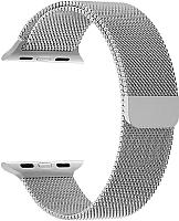Ремешок для умных часов Lyambda Capella for Watch 38/40mm / DS-APM02/2-40-SL -