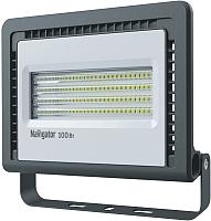 Прожектор Navigator 14 150 NFL-01-100-6.5K-LED -