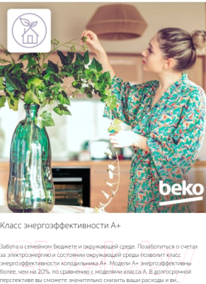 Холодильник с морозильником Beko RCSK339M20S