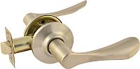 Ручка дверная Нора-М ЗВ3-05 (матовый никель) -