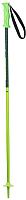 Горнолыжные палки Elan HotRod Jr / CD883618 (р.85, зеленый) -