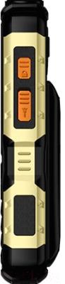 Мобильный телефон BQ Tank Power BQ-2430 (черный/золото)