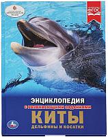 Энциклопедия Умка Киты, дельфины и косатки (Алексеев В.) -