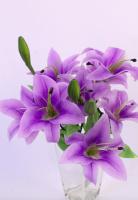 Искусственный букет Orlix Букет лилий / 06-140-B/1 (фиолетовый) -