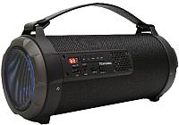 Портативная акустика Telefunken TF-PS1270B (черный) -