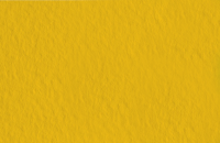 Бумага для рисования Fabriano Tiziano / 21297144 (золото) -