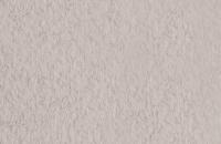 Бумага для рисования Fabriano Tiziano / 21297127 (лама) -