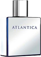 Туалетная вода Dilis Parfum Atlantica Mercury (100мл) -