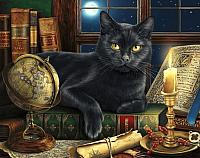 Набор алмазной вышивки Wizardi Мудрый кот / WD2485 -