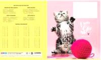 Тетрадь ArtSpace Микс для девочек / 280958 (12л, клетка) -