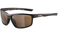 Очки солнцезащитные Alpina Sports Defey / A86453-20 (Tin Matt) -
