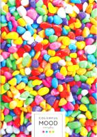 Тетрадь ArtSpace Яркое вдохновение / Т96А4кГЛ_21114 (96л, клетка) -