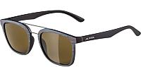 Очки солнцезащитные Alpina Sports Caruma I / A86364-91 (коричневый/серый матовый) -