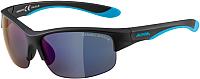 Очки солнцезащитные Alpina Sports Flexxy Youth HR / A86523-30 (черный матовый) -