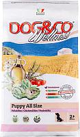 Корм для собак Adragna Dog&Co Wellness Puppy Chicken&Rice (3кг) -