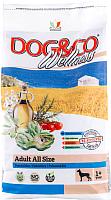Корм для собак Adragna Dog&Co Wellness Adult Fish&Rice (3кг) -