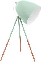 Прикроватная лампа Eglo Dundee 49337 -