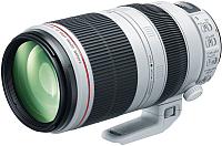Длиннофокусный объектив Canon EF 100-400mm f4.5-5.6L IS II USM (9524B005) -