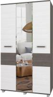 Шкаф Modern Виора В31 (анкор темный/анкор светлый) -