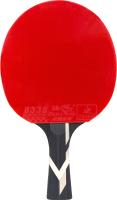 Ракетка для настольного тенниса Torneo TI-B5.0 -