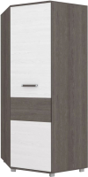 Шкаф Modern Виора В59 (анкор темный/анкор светлый) -