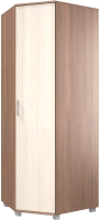 Шкаф Modern Ева Е57 (ясень шимо темный/шимо светлый) -