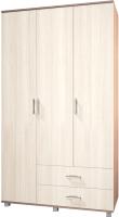 Шкаф Modern Ева Е33 (ясень шимо темный/шимо светлый) -