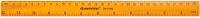 Линейка Darvish DV-11992 (30см) -