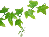 Декорация для террариума Lucky Reptile Ivy Bush / LP-62 -