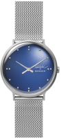 Часы наручные мужские Skagen SKW6584 -
