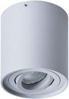Точечный светильник Arte Lamp Falcon Picolo A5645PL-1GY -