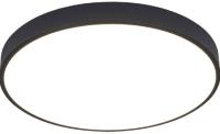 Потолочный светильник Arte Lamp Arena A2673PL-1BK -