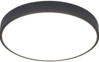 Потолочный светильник Arte Lamp Arena A2661PL-1BK -
