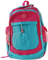 Школьный рюкзак Darvish DV-6195 -
