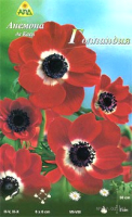 Семена цветов АПД Анемона. Де каен Голландия  / A30006 (10шт) -