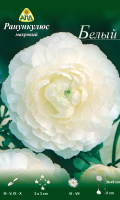 Семена цветов АПД Ранункулюс белый махровый / A30662 (10шт) -