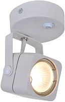 Светильник Arte Lamp Lente A1314AP-1WH -