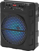 Портативная колонка Ritmix SP-810B (черный) -