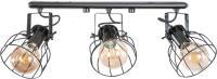 Потолочный светильник N&B Light Остин 40988 (черный матовый) -