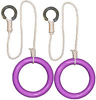 Кольца гимнастические Формула здоровья КГ01В (фиолетовый) -