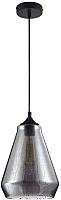 Потолочный светильник Maytoni Bergen T314-01-B -