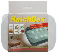 Контейнер для инкубации яиц Lucky Reptile HatchBox / HB-01 -